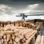Купити ліс-кругляк у Київській області на електронній біржі